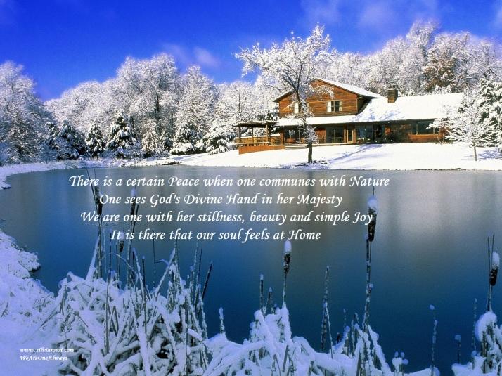 Christmas Nature3