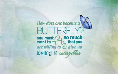 QuoteButterfly1